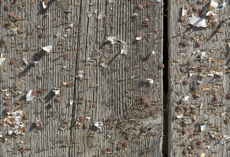 blotched: old weathered wooden board blotched with lots of staples and pins