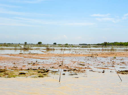 tonle sap: flooded scenery at the Tonle Sap river in Cambodia