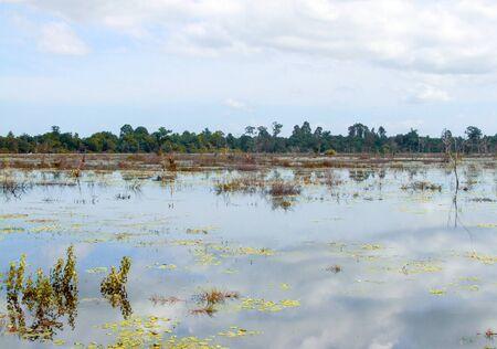 moistness: flooded scenery around Neak Pean at Angkor in Cambodia