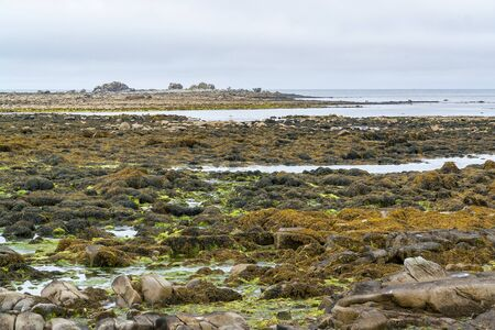 riparian: coastal scenery around Penmarch in the Finistere department of  Brittany in France