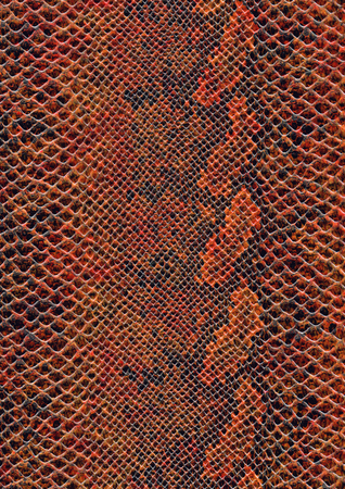 full frame scaled abstract brown patterned reptile skin surface Reklamní fotografie