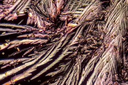polarised: microscopic shot showing feathered microcrystals in polarised light Stock Photo