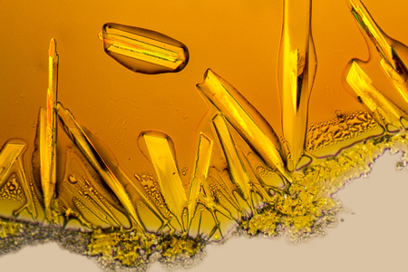 microscopic shot if some Iron (III) chloride microcrystals in fluid ambiance