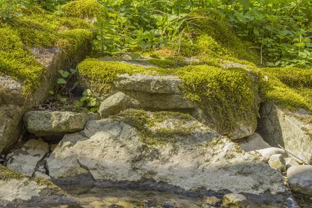 laag hoekschot van sommige bemoste overwoekerde stenen in zonnige sfeer