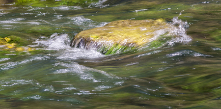 outdoor scenery showing a pebble surrounded by flowing water