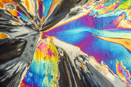 polarised: colorful microscopic shot of Trisodium citrate microcrystals in polarized light