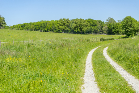 agrarian: idyllic rural scenery with field path at spring time in Southern Germany