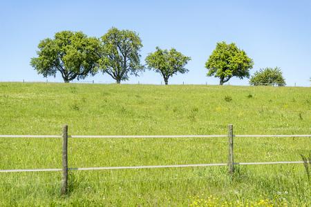 ブラウンスバッハ、ドイツ南部の地域の牧歌的な農村の春時間風景