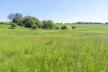 idyllic rural spring time scenery in Hohenlohe, a area in Southern Germany Stock Photo