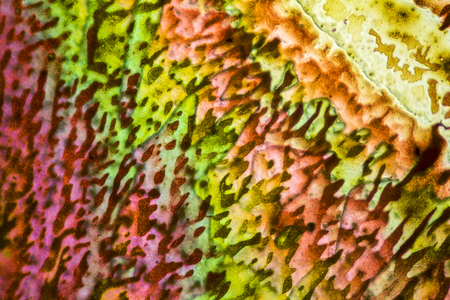 polarised: colorful microscopic shot of salt acid microcrystals in polarized light