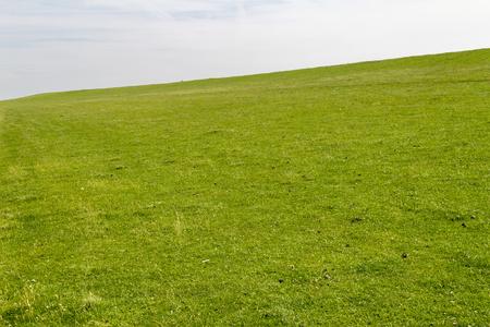 Kustlandschap met grasrijke overwoekerde dam rond Buesum in Dithmarschen in Sleeswijk-Holstein, Duitsland Stockfoto - 83858816