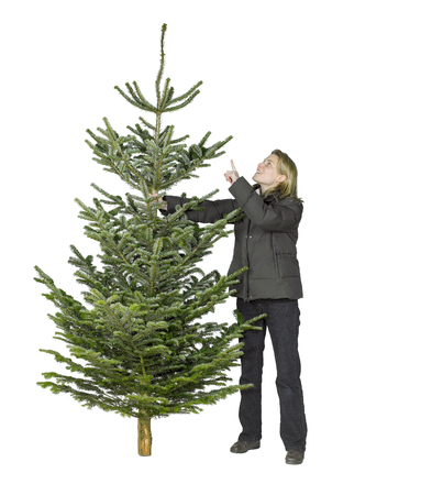 young woman and christmas tree in white back