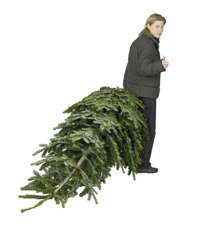 young woman pulling a christmas tree in white back Stock Photo