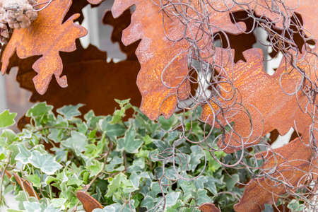 pinecones: decoration detail including a fragmented rusty bowl and ivy plant