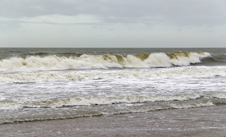 wavy coastal scenery at the north sea seen in Zeeland