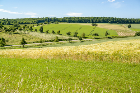 sunny idyllic rural landscape with fields and meadows in Hohenlohe, a district in Southern Germany at summer time