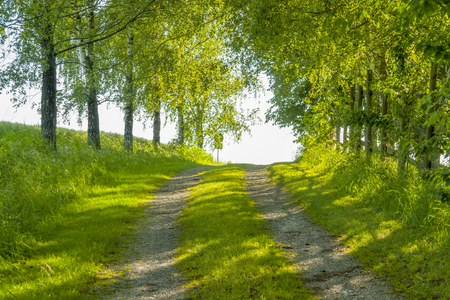 idyllic field path at spring time in Southern Germany