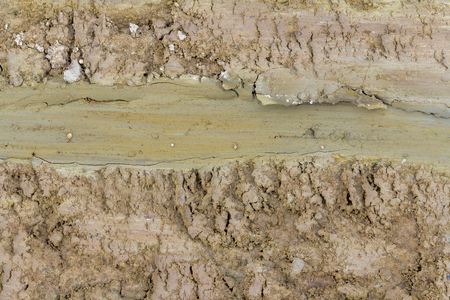 beautiful colored full frame abstract soil structure Stock Photo