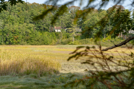 Scenery around Yarmouth in Cumberland County in Maine, USA