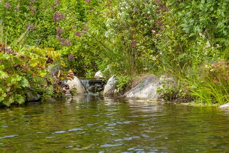 Riparian scenery at a idyllic small lake with little water fall