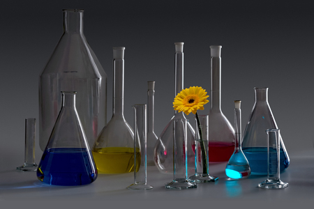 Variety of partly filled laboratory glassware including a flower head in dark ambiance