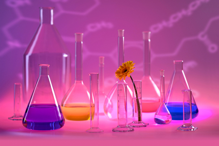 Variety of partly filled laboratory glassware including a flower head in violet illuminated ambiance Standard-Bild - 115382071