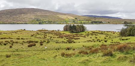 Idyllic waterside scenery in Connemara, a region in County Galway in Ireland Standard-Bild - 115382011