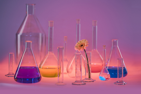 Variety of partly filled laboratory glassware including a flower head in vibrant illuminated ambiance Standard-Bild - 115381916