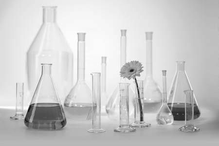 Black and white shot showing a variety of partly filled laboratory glassware including a flower head Standard-Bild - 115381921