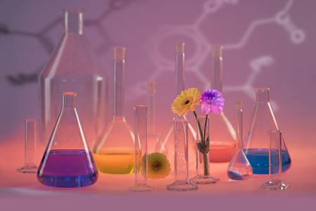 Variety of partly filled laboratory glassware including some flower heads in colorful illuminated ambiance
