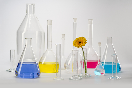 Variety of partly filled laboratory glassware including a flower head Stockfoto
