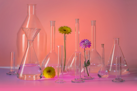 Variety of partly filled laboratory glassware including some flower heads in warm illuminated ambiance