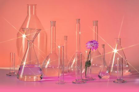 Variety of partly filled laboratory glassware including a flower head in shiny reddish ambiance
