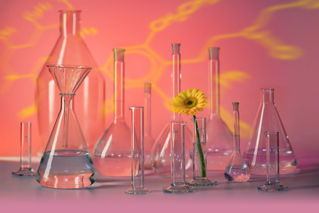 Variety of partly filled laboratory glassware including a flower head in red ambiance Stockfoto