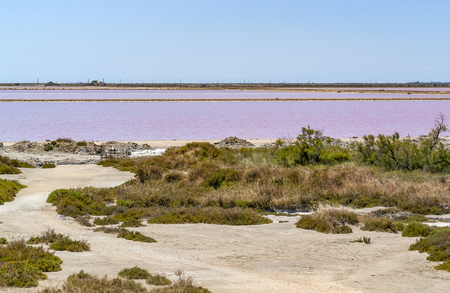 scenery around Salin-de-Giraud located in in the Camargue area in southern France wich is showing lots of salt evaporation ponds in sunny ambiance
