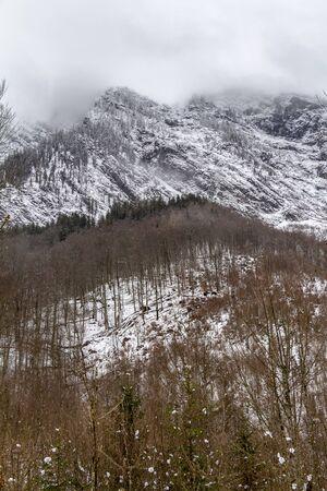 alpine mountain scenery around the Hirschau peninsula at the Koenigssee lake in Bavaria at winter time