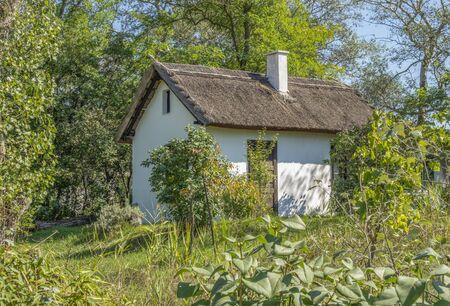 small house in a sunny garden scenery near Podersdorf am See in Burgenland in Austria
