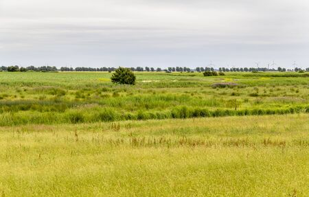 flat landscape in East Frisia, a area in Northern Germany Zdjęcie Seryjne