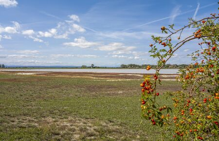 Lake named Oberer Stinkersee located  near Podersdorf am See at the Burgenland state in Austria