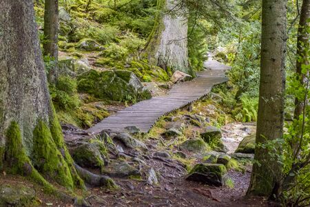 idyllic footpath around Gerardmer in France, a commune in the Vosges department in Grand Est in northeastern France