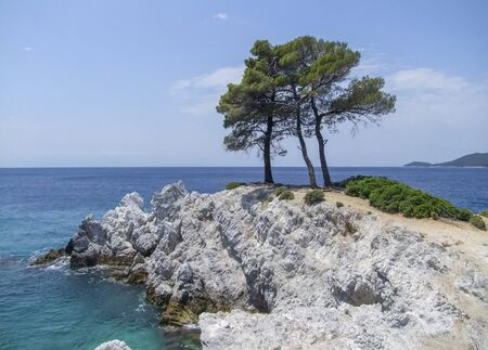 trees at Amarantos rocks at Skopelos island at the Sporades in Greece