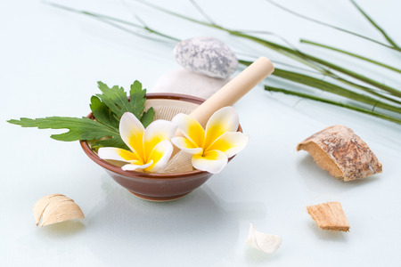 organic spa: Organic Spa concept with Mortar and Pestle, Flowers, leaf and stone Stock Photo