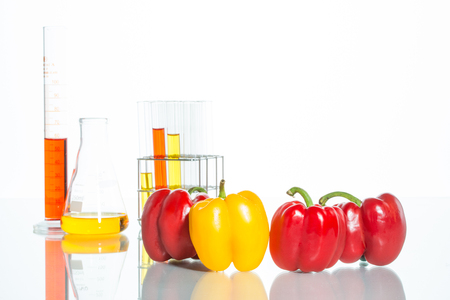 food science: Genetically modified food science of colorful pepper Stock Photo