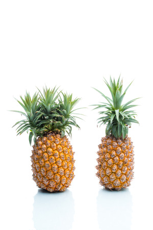 genetic food modification: pineapples
