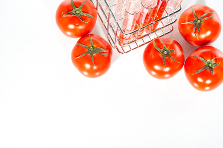 food science: Genetically modified food science of red tomato