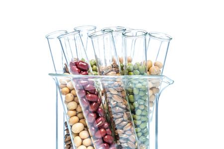 ciencia de los alimentos genéticamente modificados Foto de archivo