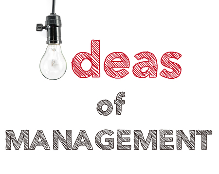 phrase: ideas of management phrase and light bulb