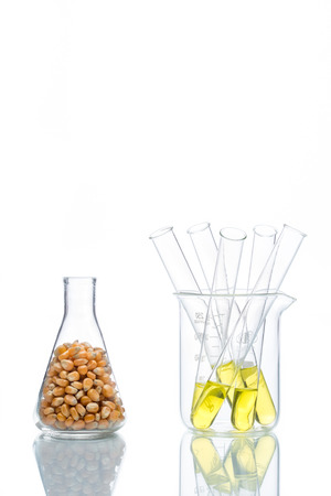 glycol: Research corn energy, biofuel and gmo in laboratory, yellow liquid in test tube Stock Photo