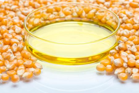 glycol: Research corn energy, biofuel and gmo in laboratory, yellow liquid in Petri Dish