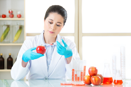 apple gmo: Researcher and microscope with a GMO apple in laboratory